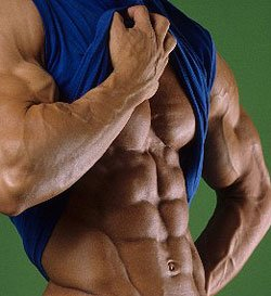 bodybuilder abs