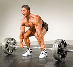 training to muscle failure