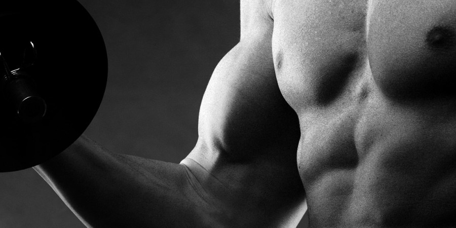 building arms workout
