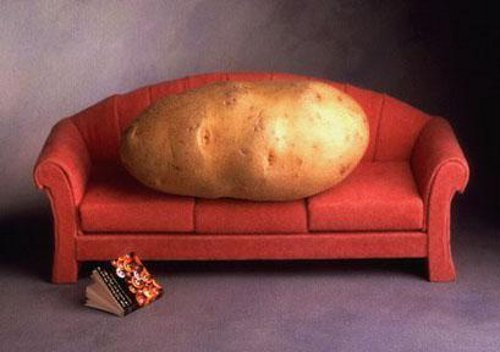 couch_potato_blitz_toonpooldotcom1