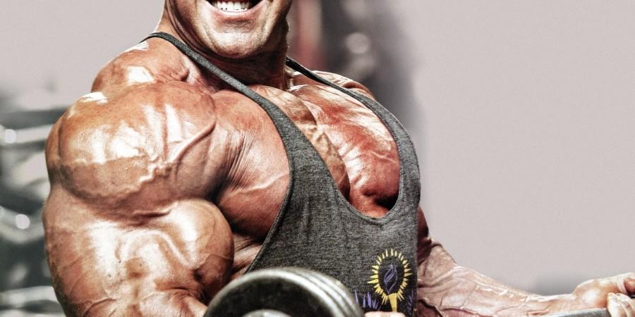 biceps training