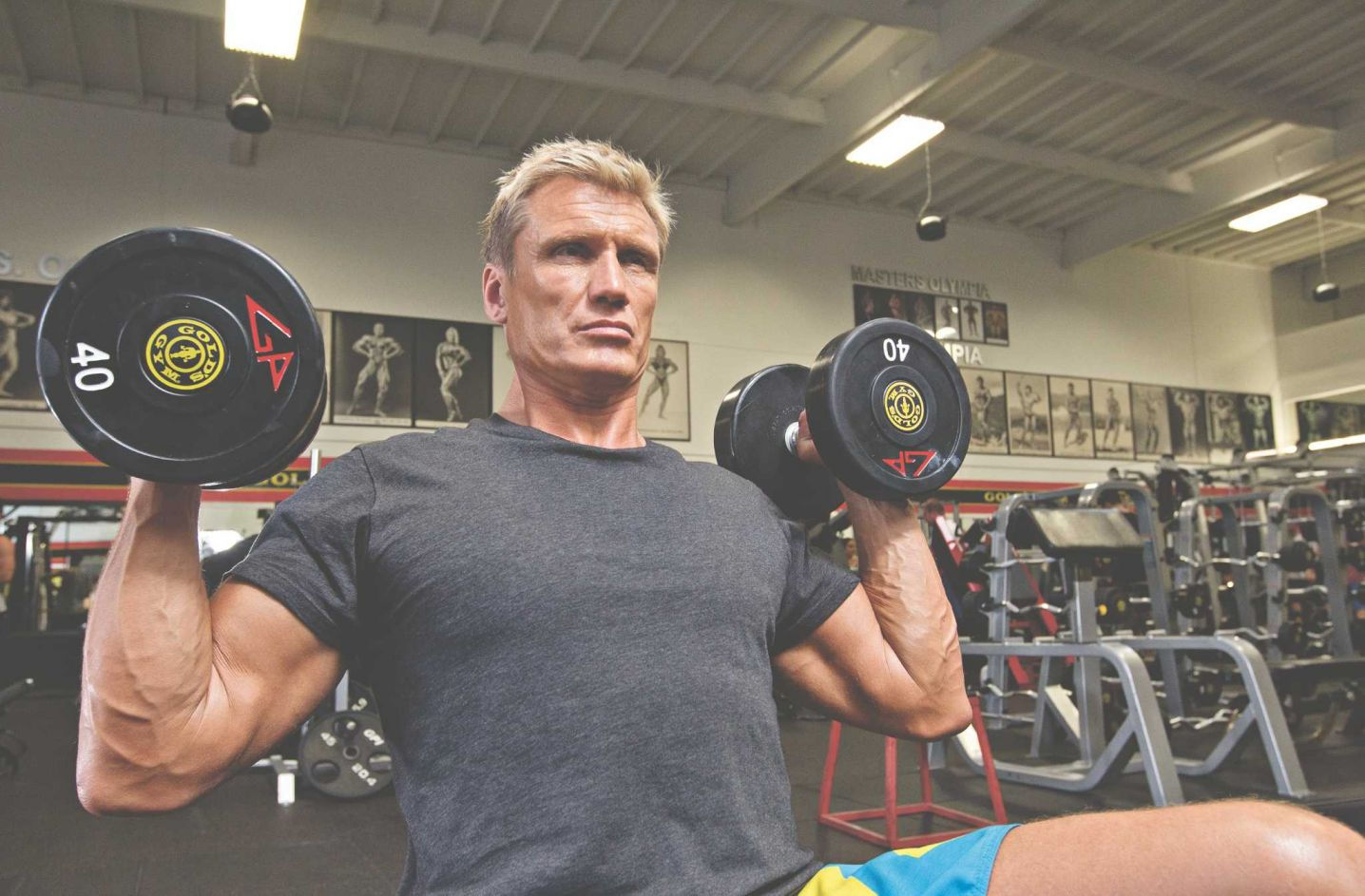 Hammer Curls - Bodybuilding Workouts Guide