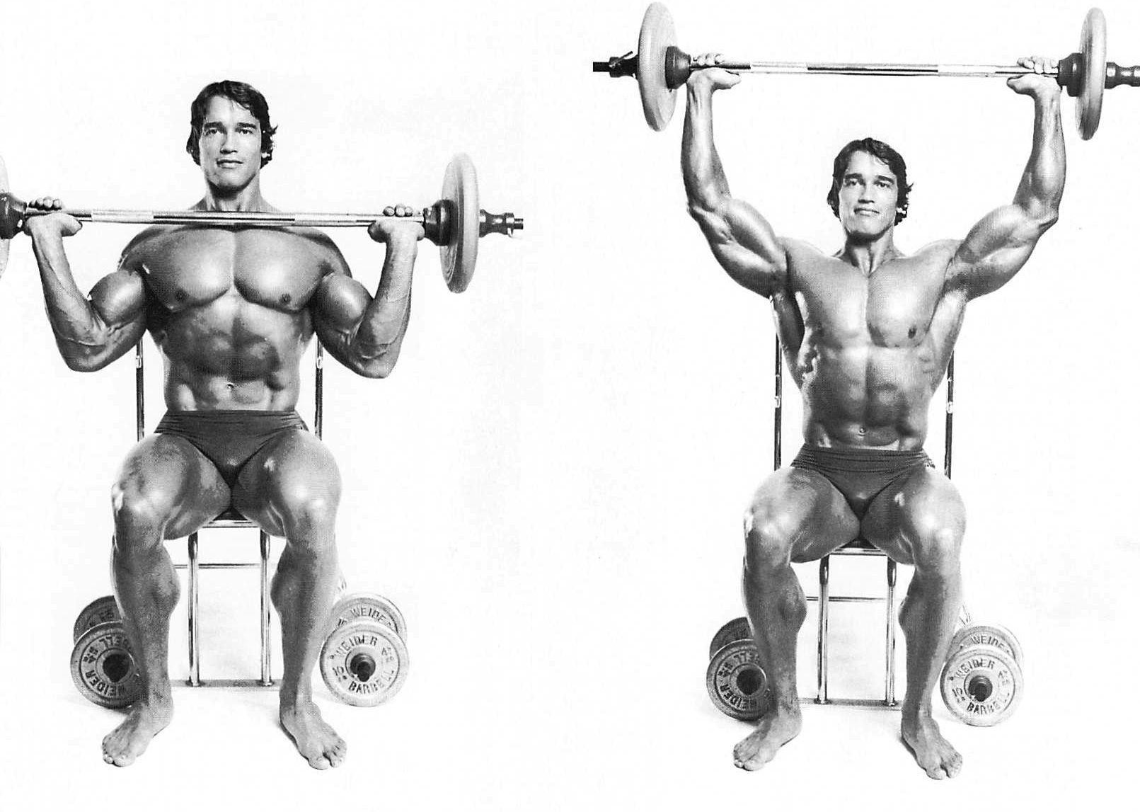 arnold shoulder press
