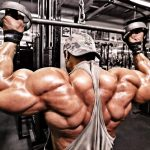 Anabolic Steroids Information