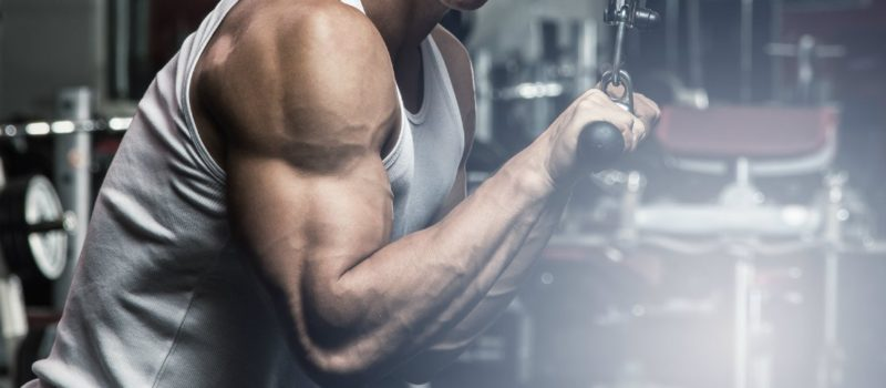 Adding Muscle