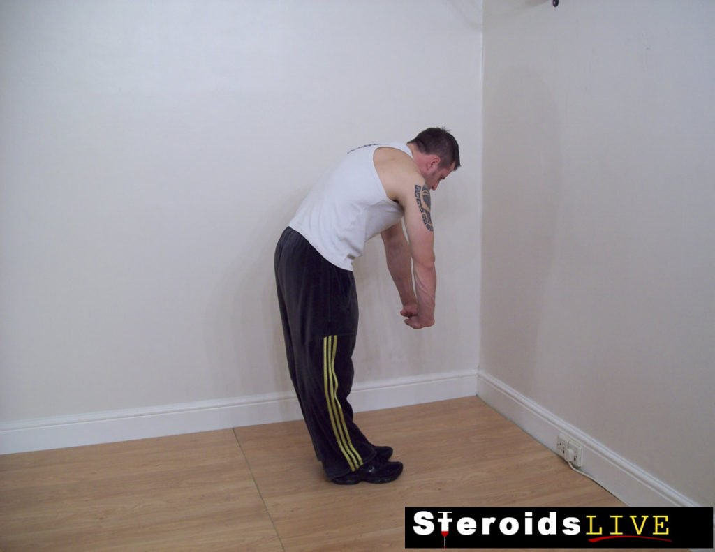 back stretching exercise 2