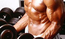 Training Biceps with Dumbbell