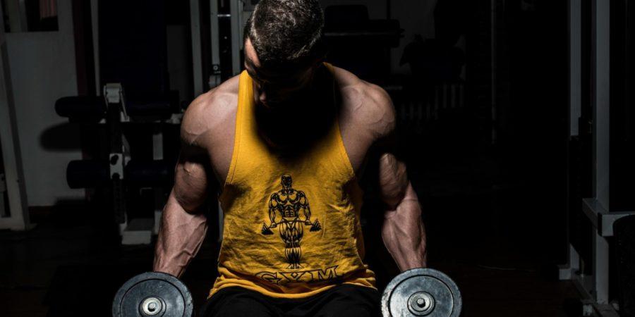 bodybuilding guidelines