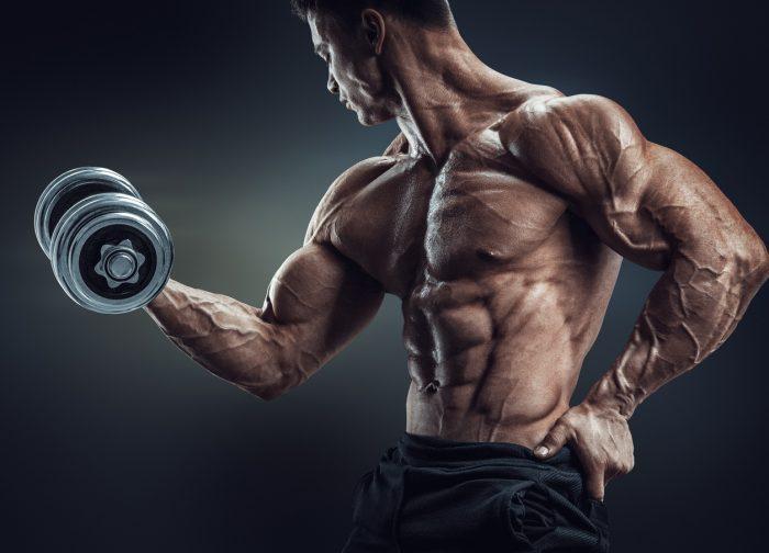 bodybuilding quiz