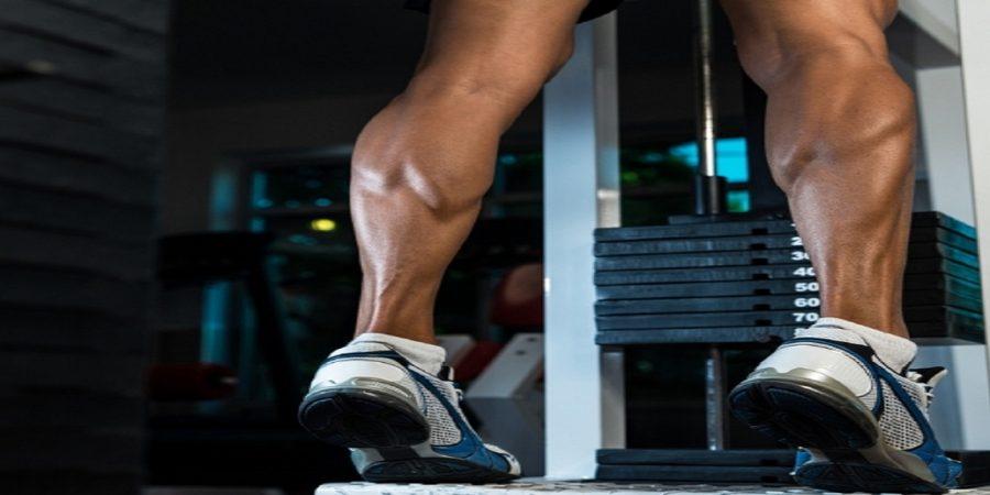 calf raise exercise