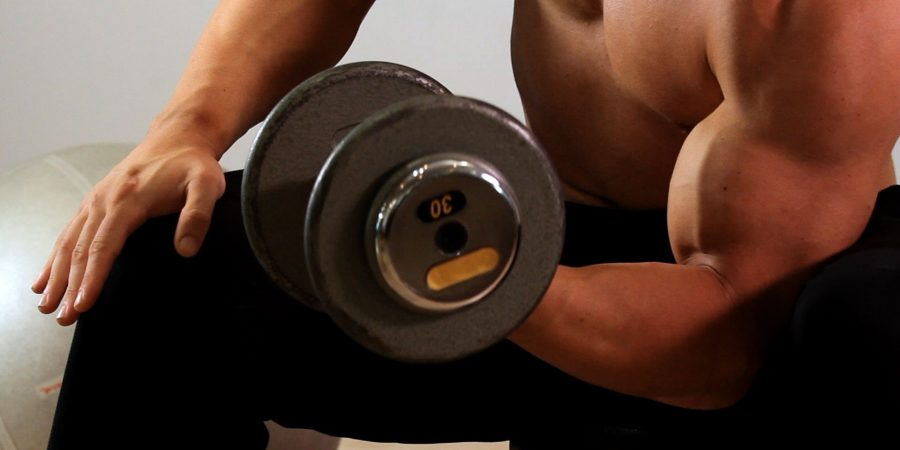 concentration curls exercise