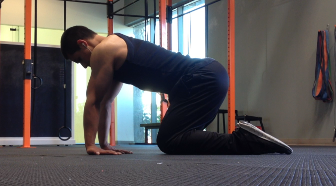 forearms stretching exercise