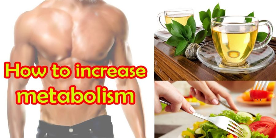 increase metabolism
