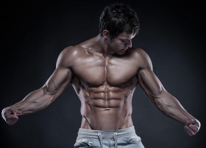 lean muscle gains