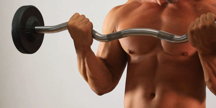 straight bar curls exercise