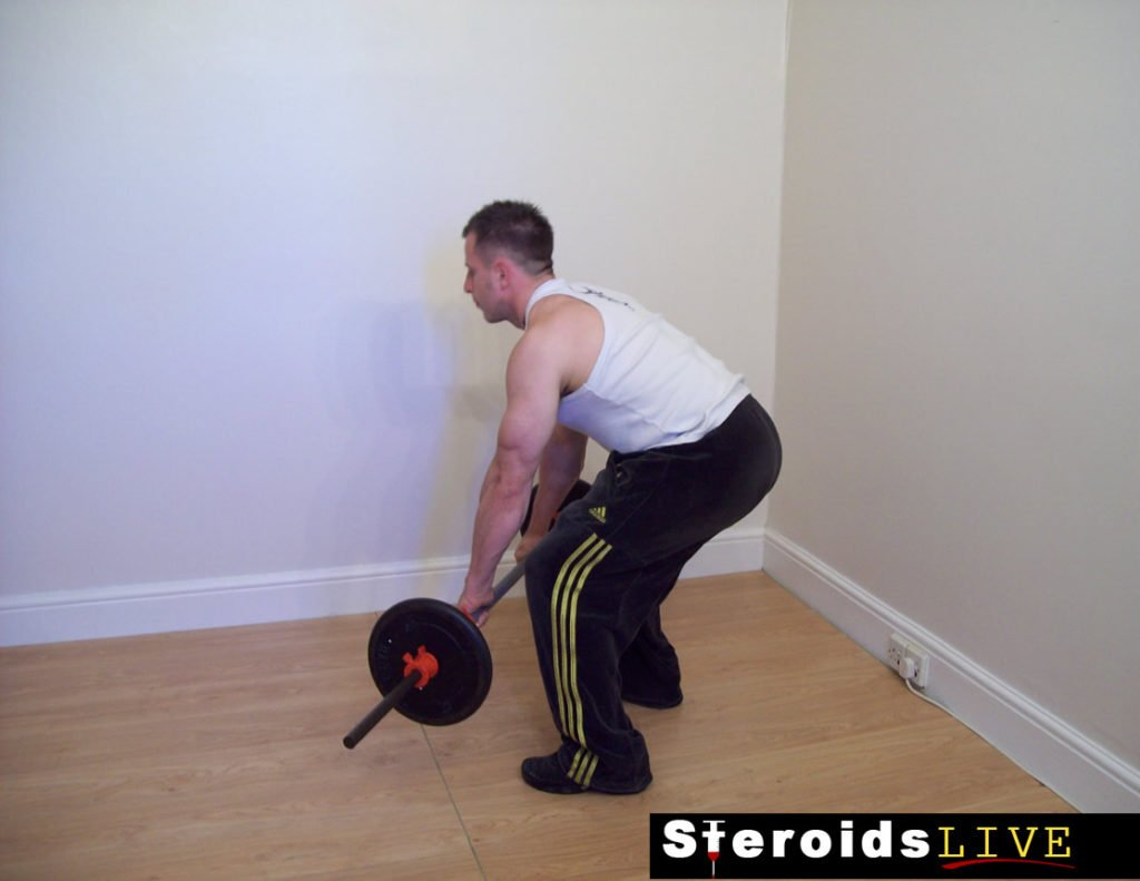 straight grip bent knee barbell row starting