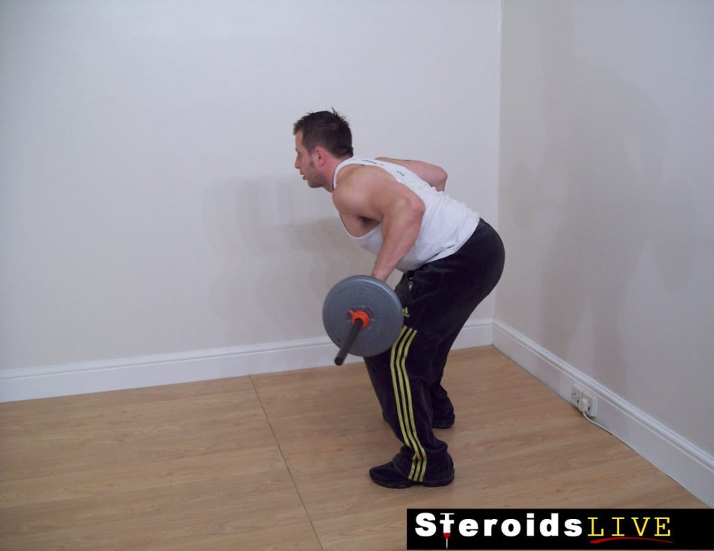 wide grip barbell bent knee row finishing