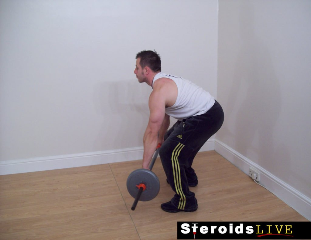 wide grip barbell bent knee row starting