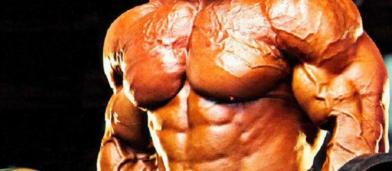 winter muscle bulk